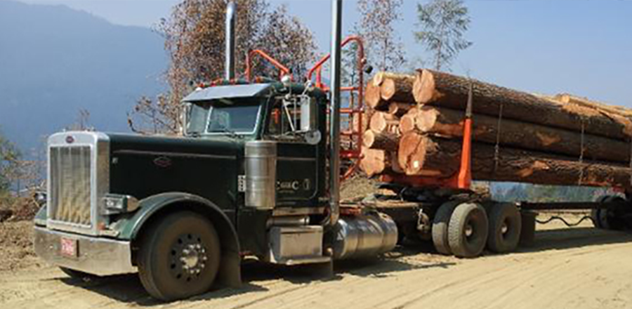 Slide 3 - Logging Truck